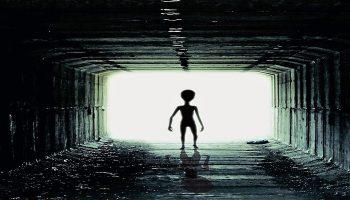 tax return aliens